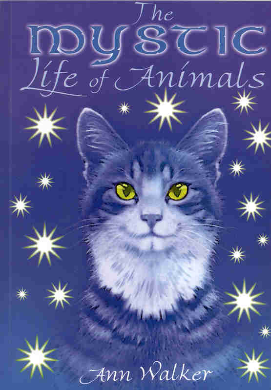 The Mystic life of Animals